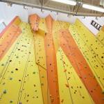 Seymour climbing wall 4